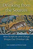 img - for Drinking from the Sources: How Scripture and Liturgy Shape Our Christian Life book / textbook / text book