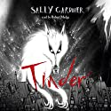 Tinder Audiobook by Sally Gardner Narrated by Robert Madge