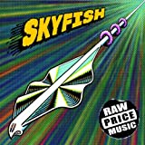 SKYFISH / RAW PRICE MUSIC