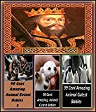 Historical: The History of England from Accession of James II vol IV Illustrated with Amazing Cloud Photography & 3 Bonus Books Amazing Animals Cutest Babies 1, 2, & 3