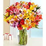 100 Blooms of Peruvian Lilies (with FREE glass vase) - Flowers