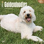 Goldendoodles 2016 Square 12x12 Wall...