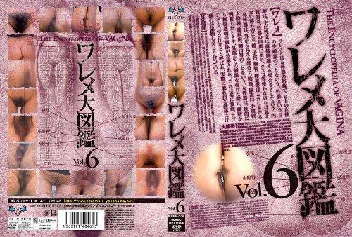 [素人の皆様] ワレメ大図鑑 Vol.6 WREM-006