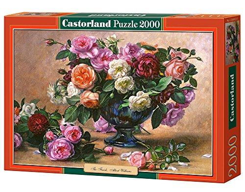 Castorland C-200412-2 - The Finish und Williams,