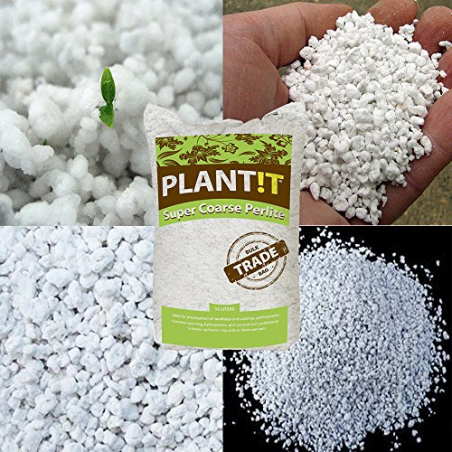 various-amount-hydroponic-super-coarse-perlite-soil-volcanic-mineral-thcity-gloves-2-liter-quart-bag
