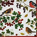 Entertaining with Caspari Winter Birds Cocktail Napkin Rings, Ivory, Pack of 20