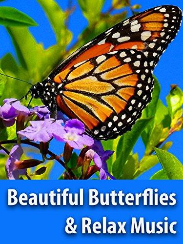 Beautiful Butterflies & The Best Relaxing Piano Music