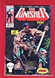 The Punisher: He Who Lives. . .Wins! (The Punisher, Vol. II, No. 40, Early Oct. 1990)