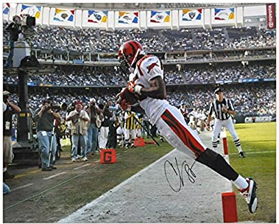 Chad Johnson Cincinnati Bengals Autographed 16'' x 20'' 2 Feet Touchdown Photograph - Fanatics Authentic Certified