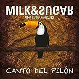 Canto Del Pilón (feat. Maria Marquez) [Original Radio Mix]