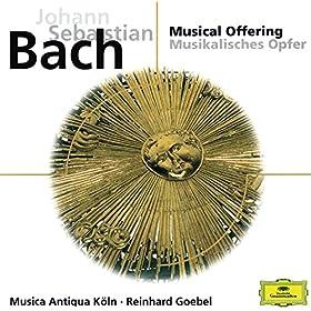 J.S. Bach: Sonata No.2 in E flat major, BWV 1031 - 2. Siciliano