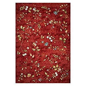 Amazon KAS Rugs HOR571 Horizons Floral Indoor