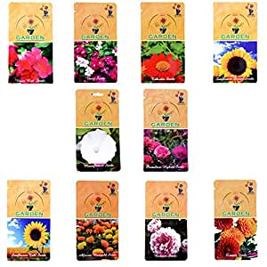 Gate Garden Flower Seeds Summer Sowing by Gate Garden