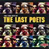 Image of album by The Last Poets