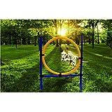 Namsan Dog Outdoor Games,pet Training Jump Hoop, Dog Agility Starter Equipment