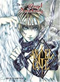 The Art of Angel Sanctuary: Angel Cage (Angel Sancturary)