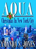 Aqua - Christmas in New York City (Aqua Romance Travel Series Book 3)