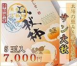 熊本産 高級秋柿 サン太秋 5玉 産地直送