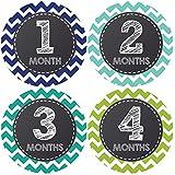 Pinkie Penguin Chalkboard Baby Monthly Stickers - Milestone Onesie Stickers - Baby Boy - 1-12 Months - Baby Shower...