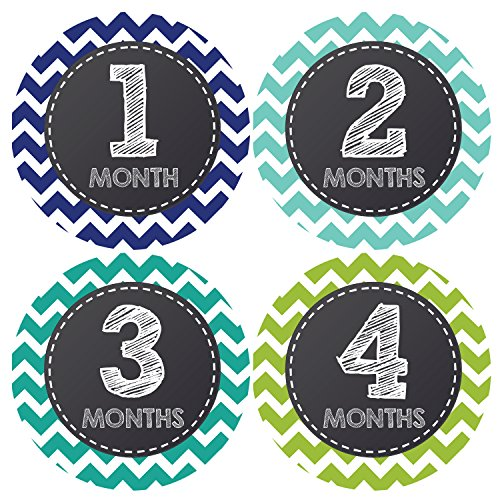 Pinkie Penguin Chalkboard Baby Monthly Stickers - Milestone Onesie Stickers - Baby Boy - 1-12 Months - Baby Shower Gift