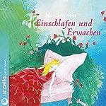 Vom Einschlafen und Erwachen   Brüder Grimm