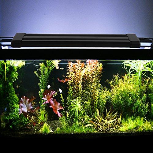 amzdeal-aquarium-light-fish-tank-led-light-white-blue