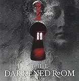 The Darkened Room by Izz