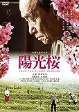 陽光桜-YOKO THE CHERRY BLOSSOM-[DVD]