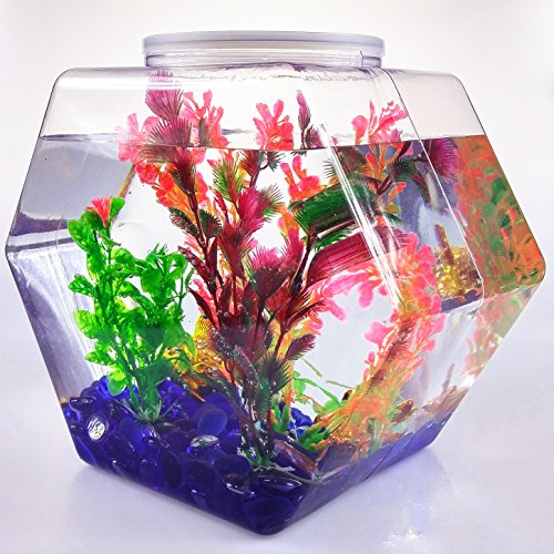 342 fl. oz. Clear Hexagons PVC Storage Container, 7 x 10 in. One Case (2 Gallon Plastic Fish Bowl compare prices)