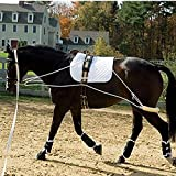 The Ultimate Horse Lunging Training Aid System Lunge Equipment - Pony, Cob/Horse, & Draft Size