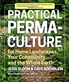 img - for Practical Permaculture: for Home Landscapes, Your Community, and the Whole Earth book / textbook / text book