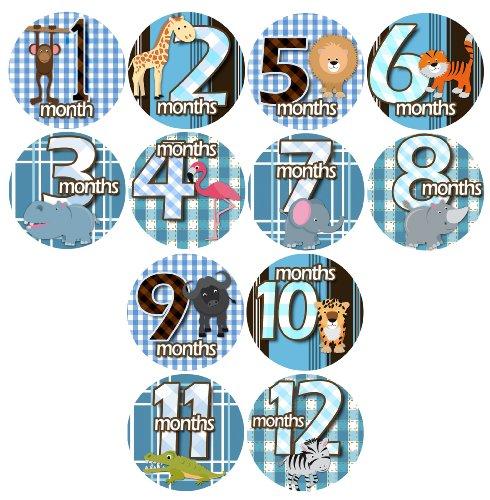 1-12 Month Onesie Stickers - WILD ANIMALS Onesie Stickers Baby Shower Gift Photo Shower Stickers, Baby month stickers by OnesieStickers