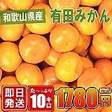 和歌山県産【有田みかん】約10kg/紀州/訳あり