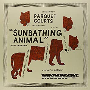 Sunbathing Animals [VINYL]