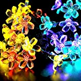 WishWorld Outdoor Solar Fairy String Lights, Waterproof Blossom Flower Light, 21ft 50 Led Christmas Lights Decorative Lighting for Indoor, Gardens, Party, Patio and Holiday Decorations(Multi-Color)