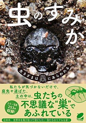 虫のすみか―生きざまは巣にあらわれる (BERET SCIENCE)