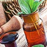 400 Sage Herb Seeds Medical Herb Plant Fast Growing DIY Home Herb