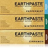 Earthpaste - 3 Pack - Assorted Flavors - Peppermint - Wintergreen - Cinnamon - Natural Organic Flouride Free Toothpaste - 4 Ounce Tubes (Tri Flavor)