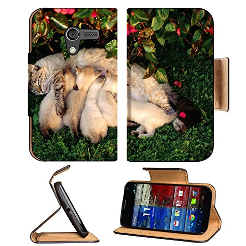 Mother Cat Kitten Feeding Grass Milk Animal Pet Motorola Moto X Flip Case Stand Magnetic Cover Open Ports Customized Made To Order Support Ready Premium Deluxe Pu Leather 5 7/16 Inch (138Mm) X 3 1/16 Inch (78Mm) X 9/16 Inch (14Mm) Luxlady Mobility Cover P front-993737