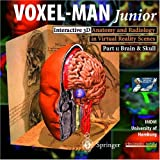 img - for Voxel-Man Junior: Interactive 3d: Anatomy and Radiology in Virtual Reality Scenes: Part 1: Brain & Skull (CD-ROM for Windows) book / textbook / text book