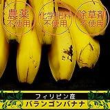 無農薬・無化学肥料のバナナ 1kg ★フェアトレードバナナ★