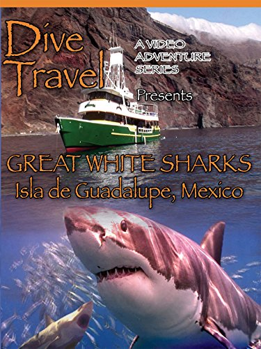 Dive Travel Great White Sharks Isla de Guadalupe, Mexico