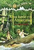 Una Tarde En El Amazonas (Casa del Arbol) (Spanish Edition)