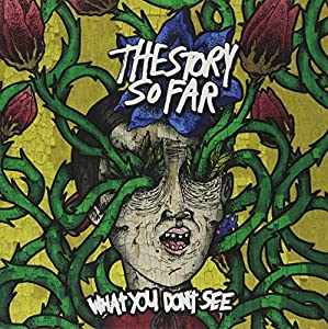 What You Don't See [VINYL]