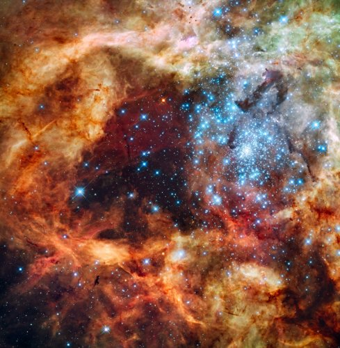 Hubble Space Telescope Photo The Tarantula Nebula Nasa Photos 8X8