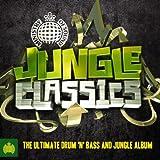 Jungle Classics - Ministry Of Sound [Explicit]