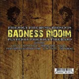 echange, troc Friendly Fire Band - Badness Riddim