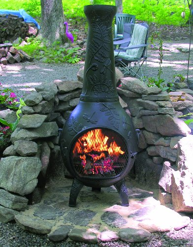 Chiminea Outdoor Fireplace - Blue Rooster ALCH014-CH - Dragonfly Chiminea Outdoor Fireplace - Charcoal photo B003GWZFHM.jpg
