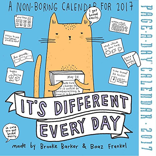 its-different-every-day-2017-page-a-day-calendar