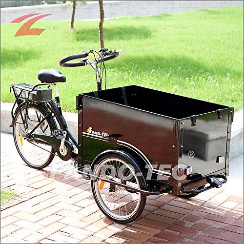 znl dreirad znl elektro dreirad elektrodreirad fahrradanh nger fahrrad f r erwachsene lastenrad. Black Bedroom Furniture Sets. Home Design Ideas
